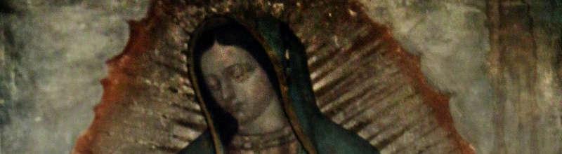Virgen-Guadalupana-800-220